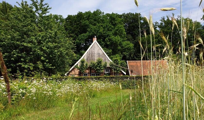 <p>Ook het Koetshuis, de Heemtuin, de Viermarkenlinde en de Oldenhof gaan open.</p>
