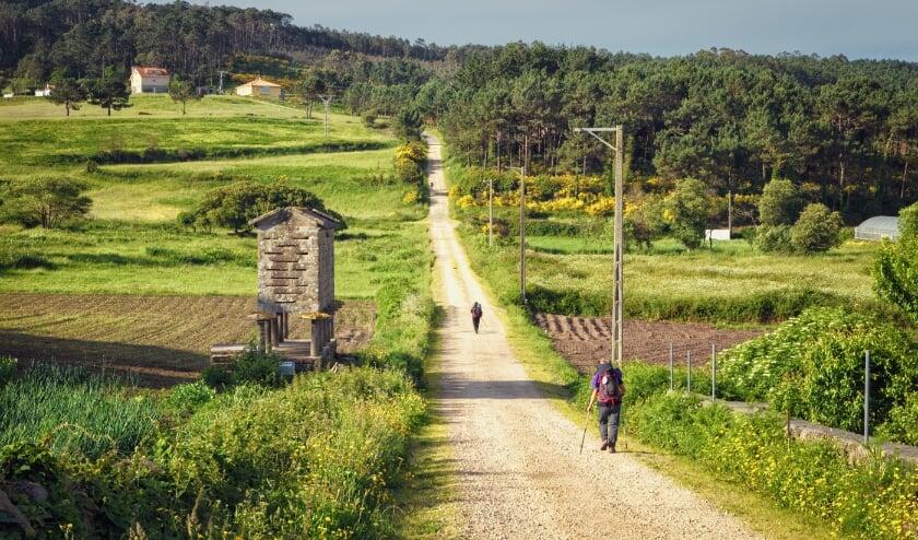 <p>Pelgrims wandelen door heel Europa om aandacht te vragen voor het klimaat.</p>