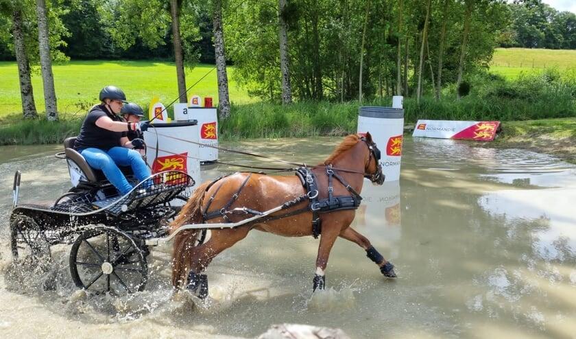 <p>Marloes van &lsquo;t Veld heeft veel ge&iuml;nvesteerd. Zelf een pony gekocht en getraind. Dit wordt nu beloond met een deelname aan WK mennen.</p>