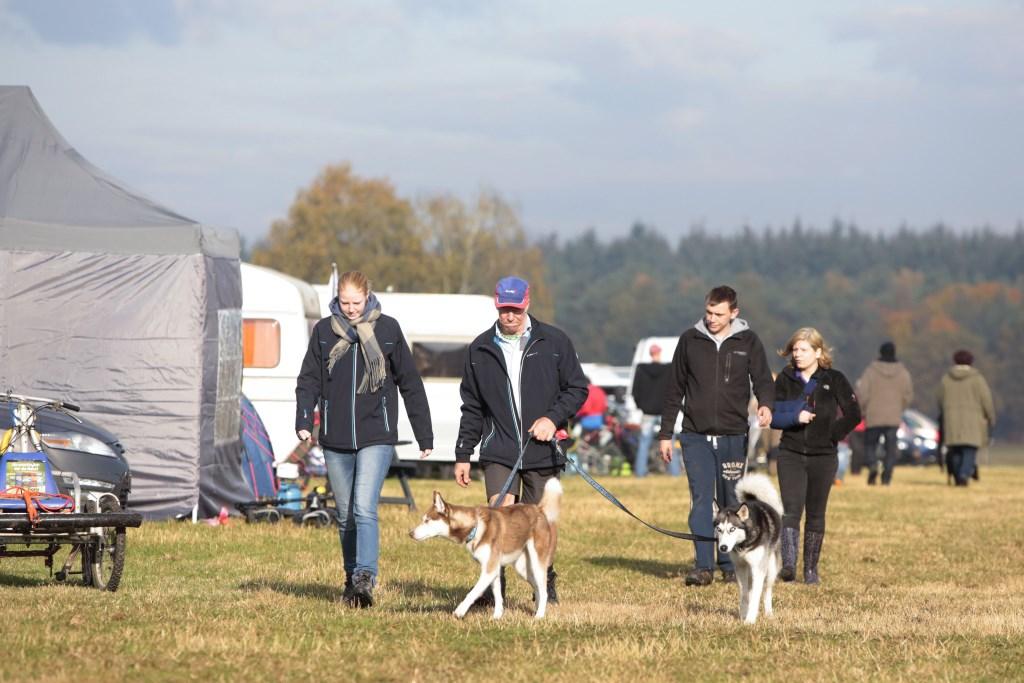 Op de 'stake out' waren meer dan 1.000 honden aanwezig.  © DPG Media
