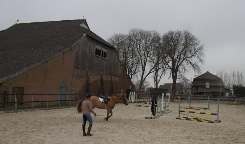 Links de voormalige oven, op de achtergrond de bazenwoning. De paarden zijn nu ook al de bewoners van het terrein, maar hun stallen krijgen een andere plek. (Foto: Richard Avontuur)