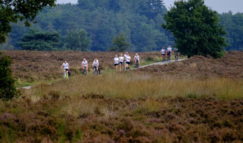 De LEEF Marathon loopt dwars door de Veluwe.