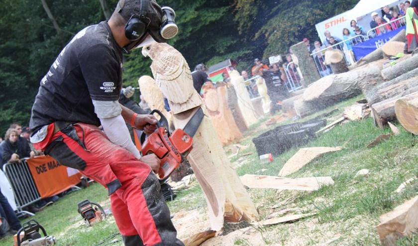 Eer zijn acht carving kunstenaars uitgenodigd om tijdens de Jaarmarkt met de bomen aan de slag te gaan.