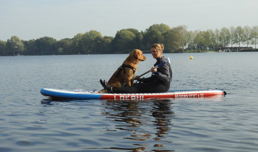 Het was de eerste keer dat honden op een plank de Zegerplas op gingen, maar het lijkt er op dat dit het begin is van een nieuwe sport!