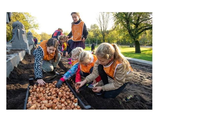 Diverse kinderen uit Montferland gaan binnenkort bloembollen planten. In totaal doen vijf landen mee en worden er 1 miljoen bollen geplant. (foto: PR)