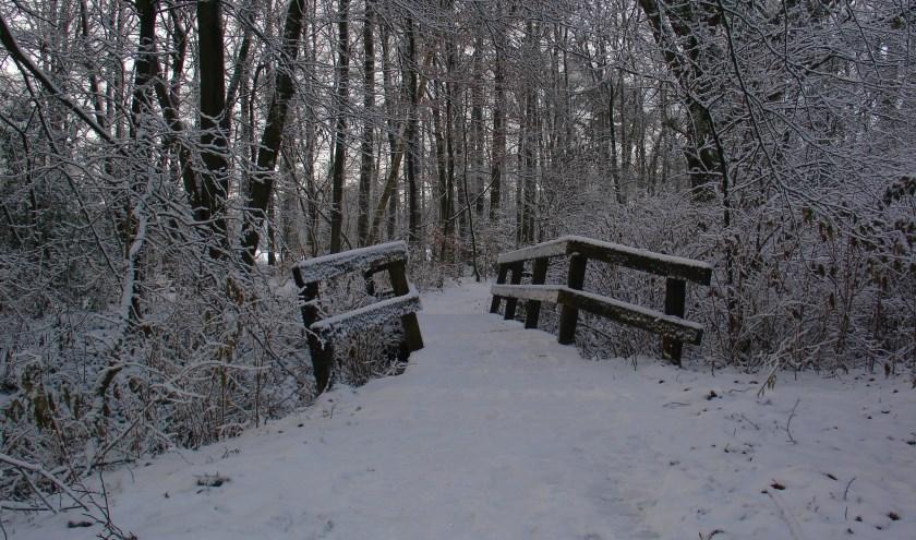 Het bruggetje bij de Hakenbergvijver, onderdeel van de Kerstwandeling die op Tweede Kerstdag in Beuningen start.