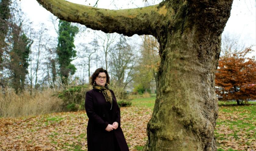 Onder de 42.000 bomen zitten ook enkele monumentale exemplaren zoals deze bij de Dobbe.