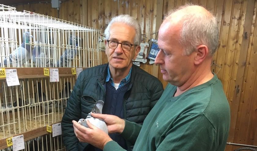 leden van PV de Vredesduif keuren een duif