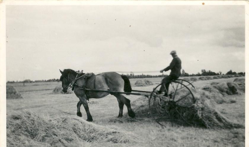 Uitgelezene Verhalen over boerenleven gebundeld in boek | Papendrechts Nieuwsblad SJ-22