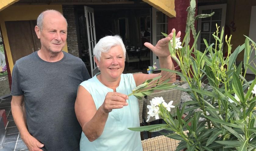 De familie de Boer uit Middelburg bij hun oleanderpijlstaart.