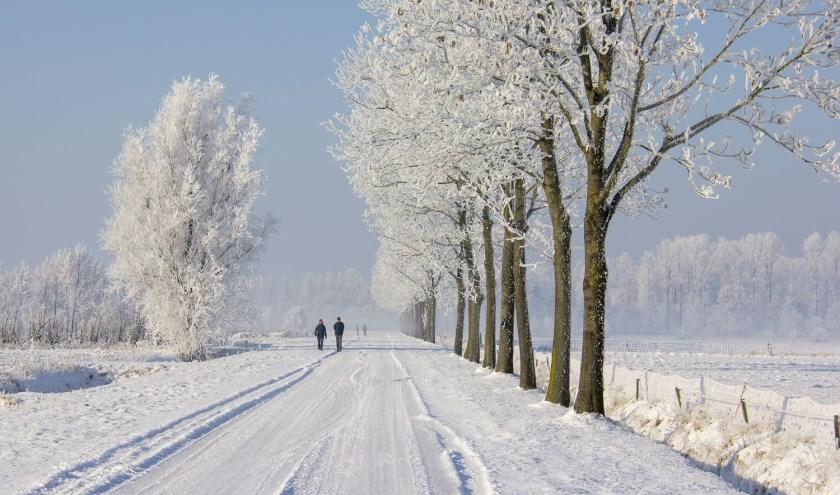De Foto van de Maand. Dit keer dit prachtige winterlandschap van Ad Dekkers.