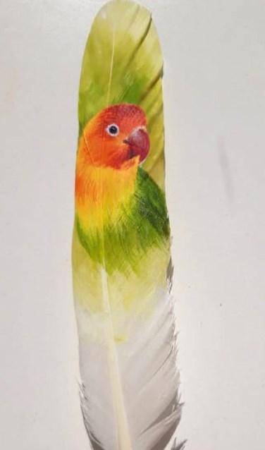 Naast vogels zijn er ook beschilderde veren te zien, zoals deze met een agapornis erop. (foto:Bettina Regeling-Cabrera)