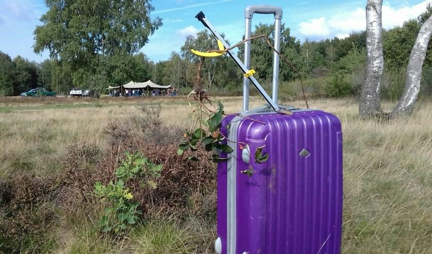 Paarse Krui-koffer