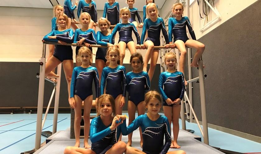De meisjesclub (7-10 jaar) van dinsdagavond. (Foto's: Martina Roovers)