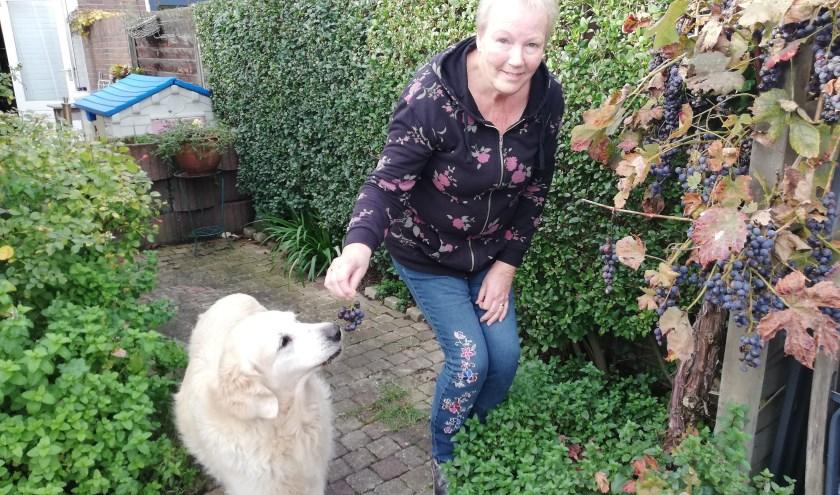 Freja de Mooij voert haar elf jaar oude hond wat druifjes. Uit eigen tuin, die ze ook nog bijhoudt. Foto: Conny den Heijer