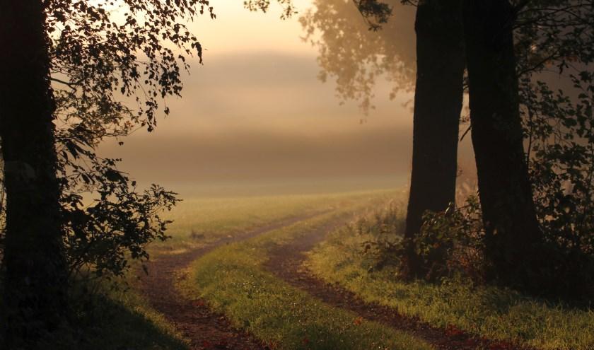 ''Het is zonnig warm en een zachte nevel zweeft hier over het glooiende Lonneker laand.'' Dat schrijft Eddy Oude Voshaar over zijn wandeling door Lonneker.