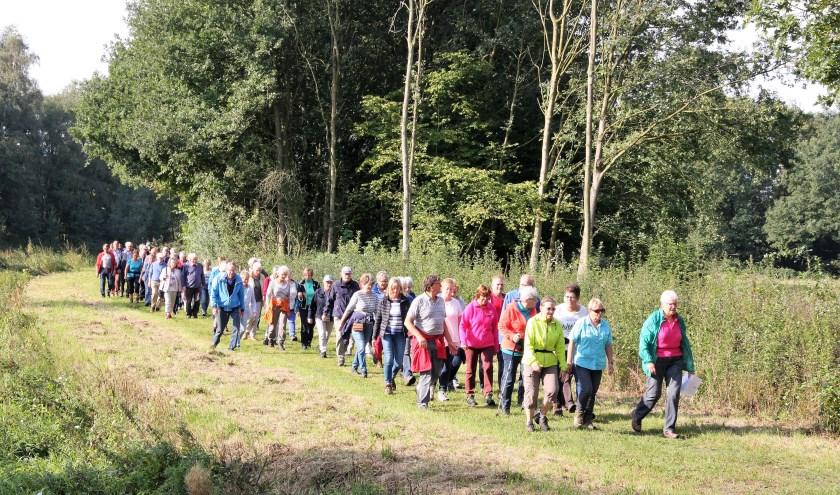 Al twaalfenhalf jaar wordt er gewandeld in de vier dorpen van de gemeente Haaren. Het aantal deelnemers groeit nog steeds.
