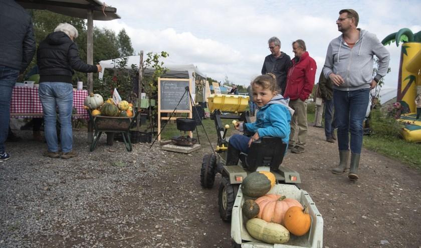 Driss vervoert met de skelter pompoenen bij Stadslandbouw Mooieweg. Daar was tijdens de open dag veel te beleven. (foto: Ellen Koelewijn)