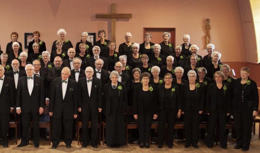 CKV Novo-Cantare
