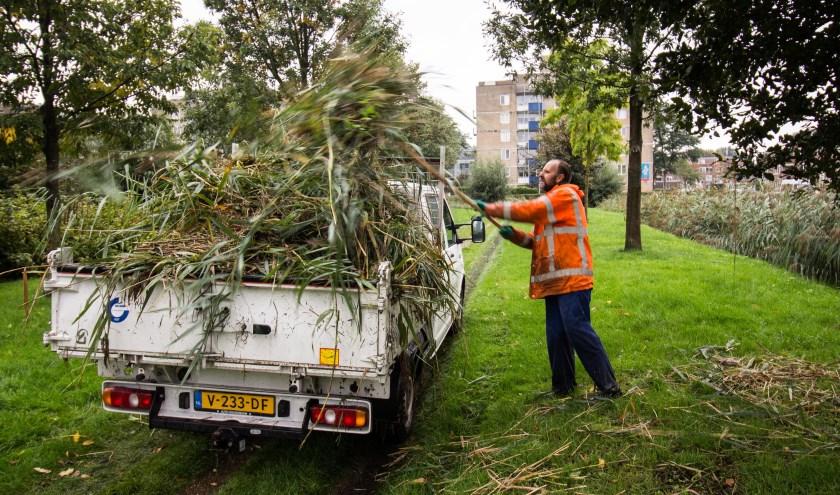 De groene plekken in Zevenkamp worden goed bijgehouden. (Foto: Kees Bosman)