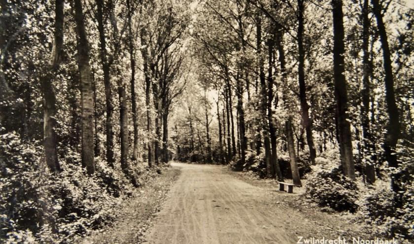 Een foto uit de jaren dertig van één van de vele heerlijke wandelpaden in het Noordpark. Collectie Historische Vereniging Zwijndrecht