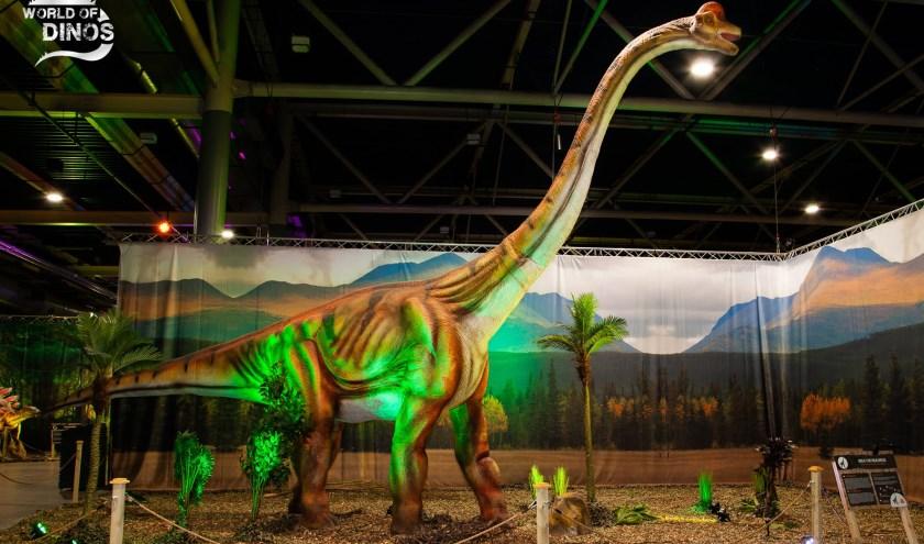 Tachtig dinosaurussen komen naar Den Bosch. Nooit eerder was een dino expositie van deze omvang in Brabant te zien.