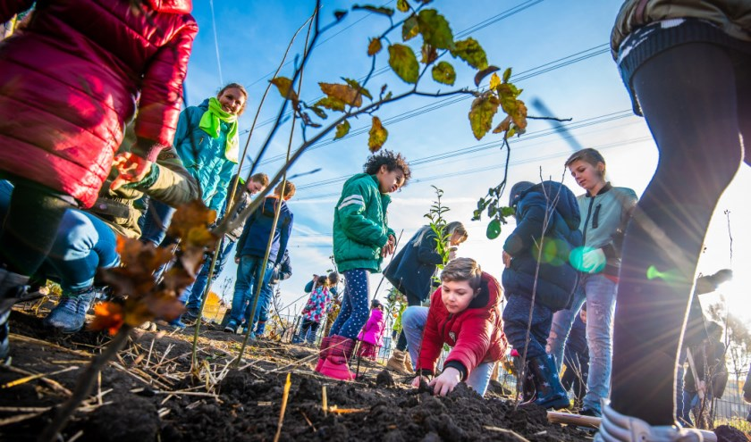 Kinderen planten een Tiny Forest aan.