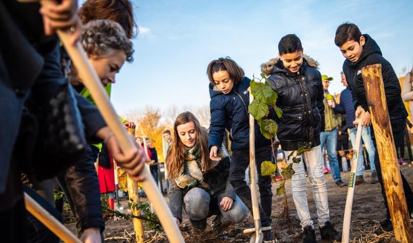 IVN Natuureducatie plant de komende maanden, samen met scholen, vrijwilligers, gemeenten en tuineigenaren, 80 Tiny Forests en 400 Tuiny Forests aan door heel Nederland.