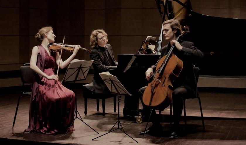 Het Van Baerle Trio. Eigen foto