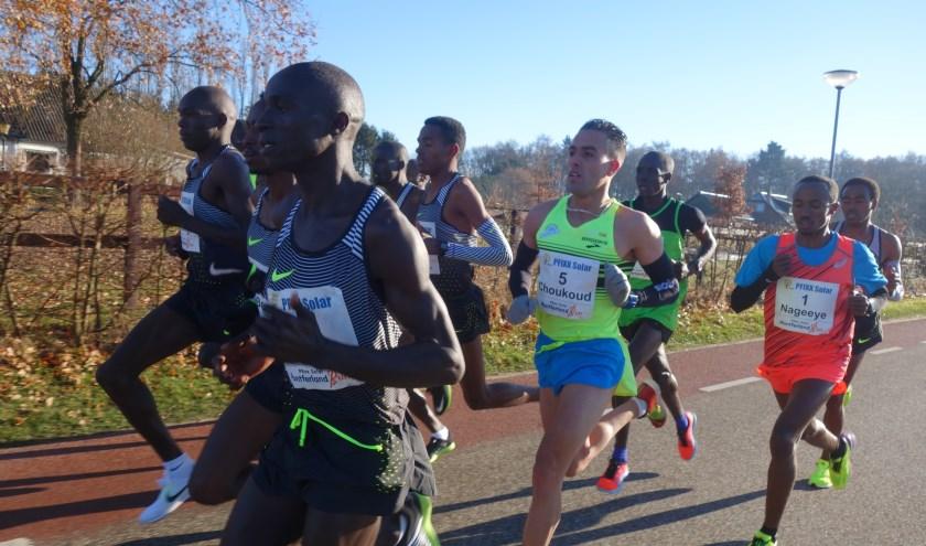 De Nederlandse langeafstandloper Khalid Choukoud (in het midden met nummer 5) tijdens een eerdere editie van de Montferland Run. (foto: PR)