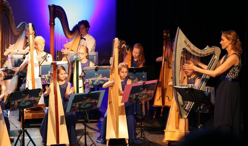 Blue Planet Harp Ensemble. Foto: Emmanuel Frimout