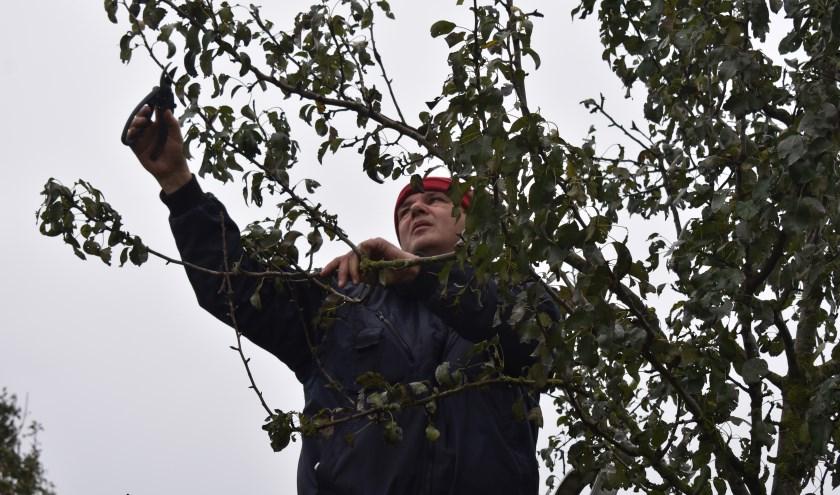 In de gemeente Losser zijn op veel terreinen vrijwilligers actief. Foto ter illustratie. Foto: Van Gaalen Media.