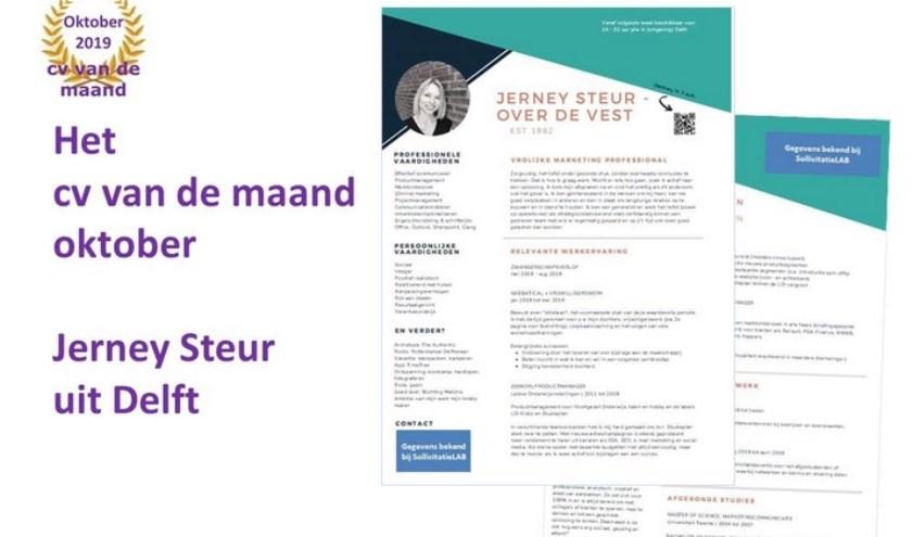 cv Jerney Steur - Over de Vest