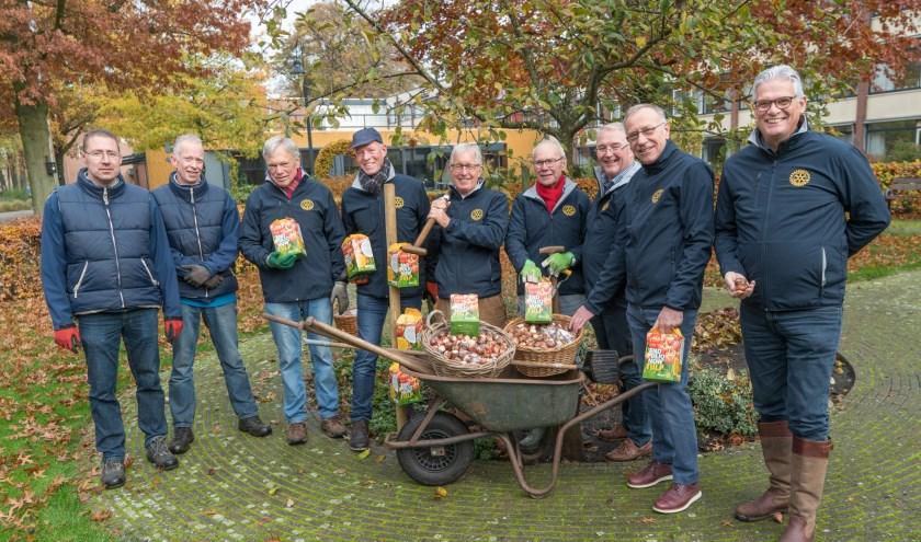 Tulpenbollen voor De Vriezenhof