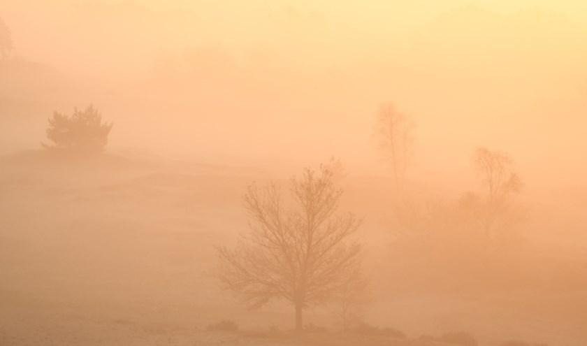 Zonsopkomst met mist.