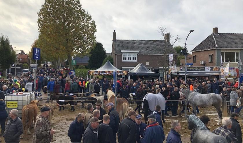 Alle festiviteiten rondom de Paardenmarkt waren weer erg geslaagd dit jaar! Het aantal paarden lag net iets onder dat van vorig jaar, maar dat mocht de pret niet drukken.