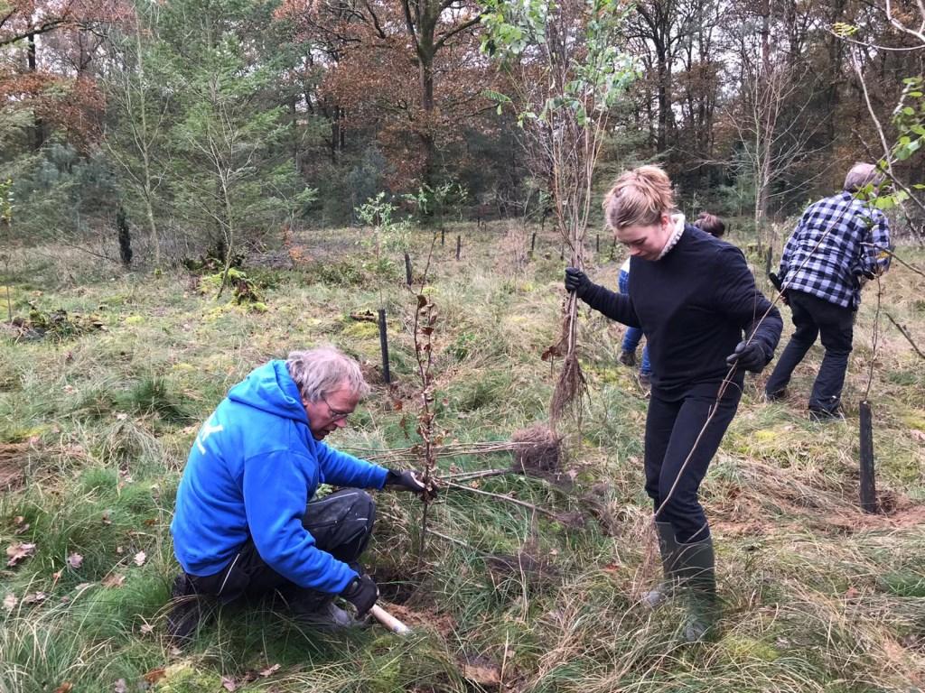 familie en vrienden planten de bomen Foto: Zwarthout © DPG Media