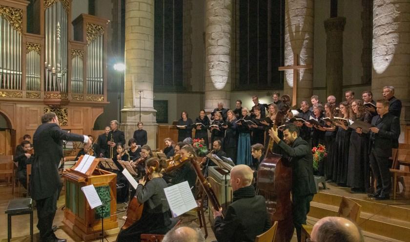 Dutch Baroque werd opgericht in 2014 door Gerard de Wit en legt zich toe op muziek uit de 17e en 18e eeuw