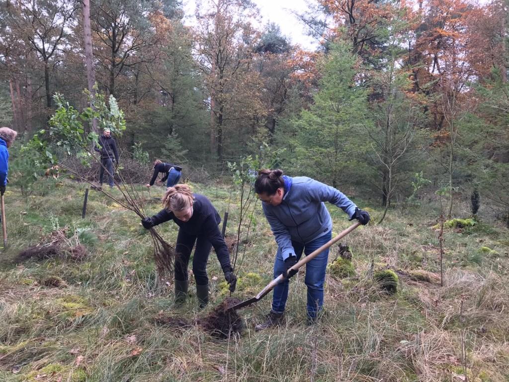 familie en vrienden planten de bomen  © DPG Media
