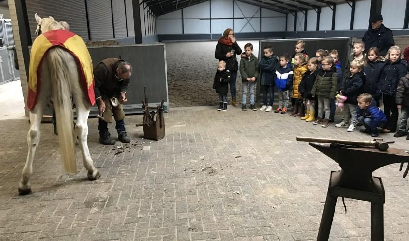 Hoefsmid Henk en Frans van Stal Frontera samen aan het werk om Ozosnel 'nieuwe schoenen' te bezorgen onder toeziend oog van de kinderen.