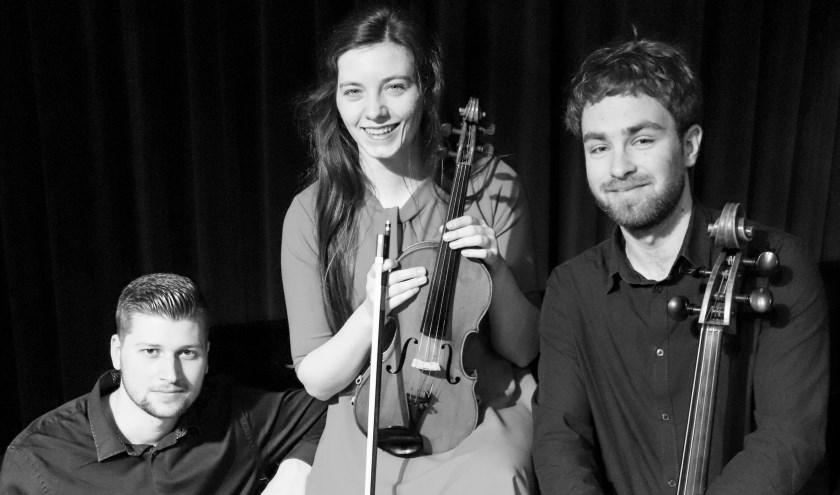 Het Dmi-trio treedt op tijdens het jaarlijkse vriendenconcert van de Kunstkring Hattem.