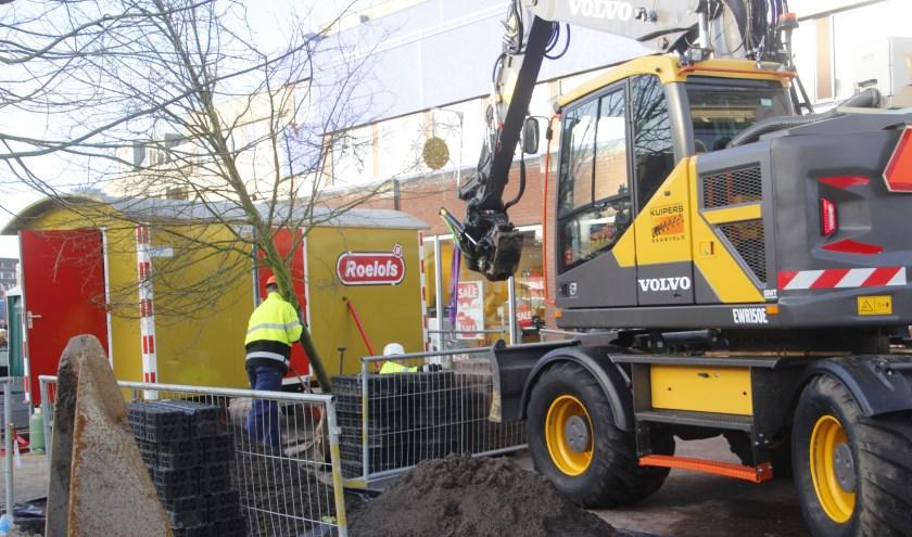 De bomen die onlangs de grond in zijn gegaan op het nieuwe Marktplein, de Corridor, kregen een heel 'gespreid bedje' om zich te wortelen
