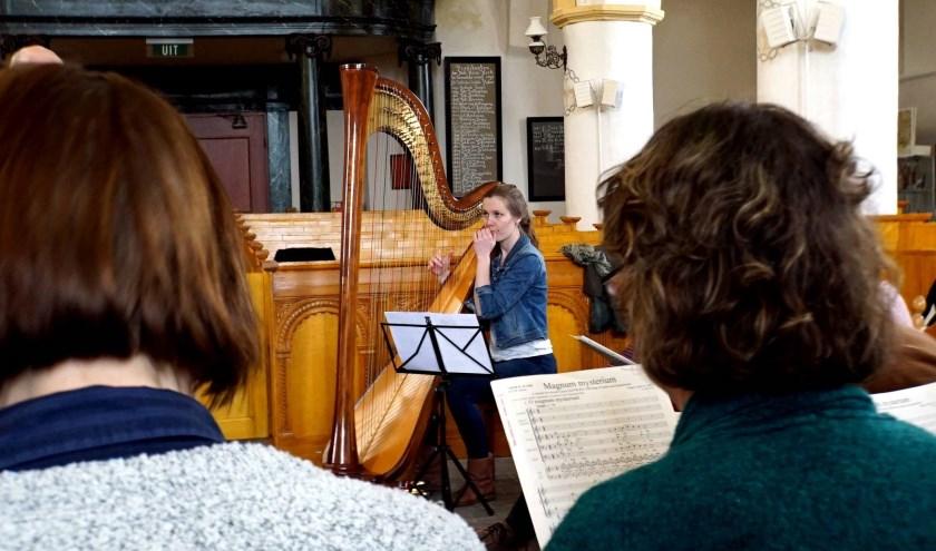 Harpiste, Annegreet Rouw