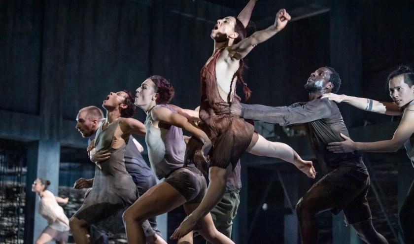 Synchrone groepsdansen en vloeiende duetten in de nieuwste voorstelling van Conny Janssen Danst, dinsdag 17 december te zien in het Isala Theater. (Foto: Andreas Terlaak)