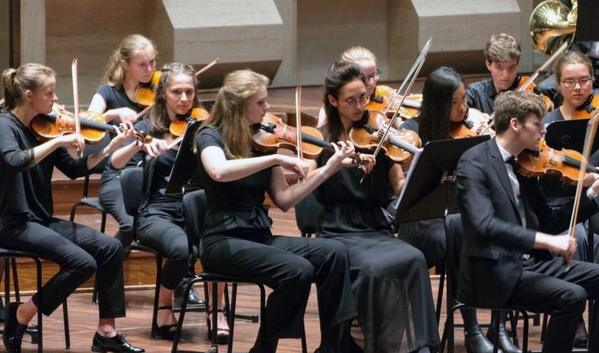 Muzikant van Rotterdams Jeugd Symfonie Orkest  tijdens eerder optreden