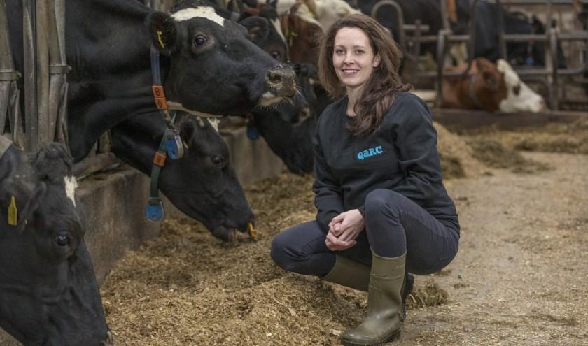 De toekomst van de veehouderij is een belangrijk onderwerp bij de verkiezingen voor Provinciale Staten op 20 maart.