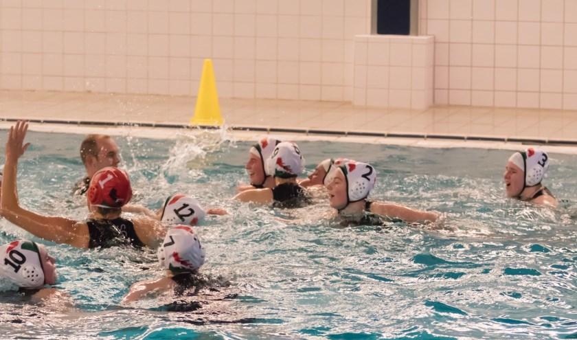 Het kampioenschap en promotie naar de eerste klasse zijn met de 8-5 overwinning binnen.Foto: Corstiaan Aantjes