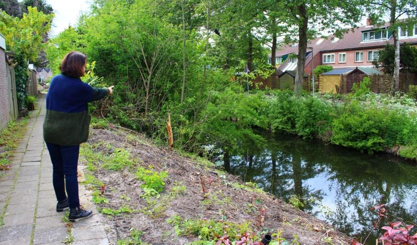 Hedy Bruynsteen laat zien welke struiken voorlopig nog blijven staan. (Foto: Margriet van Dam)