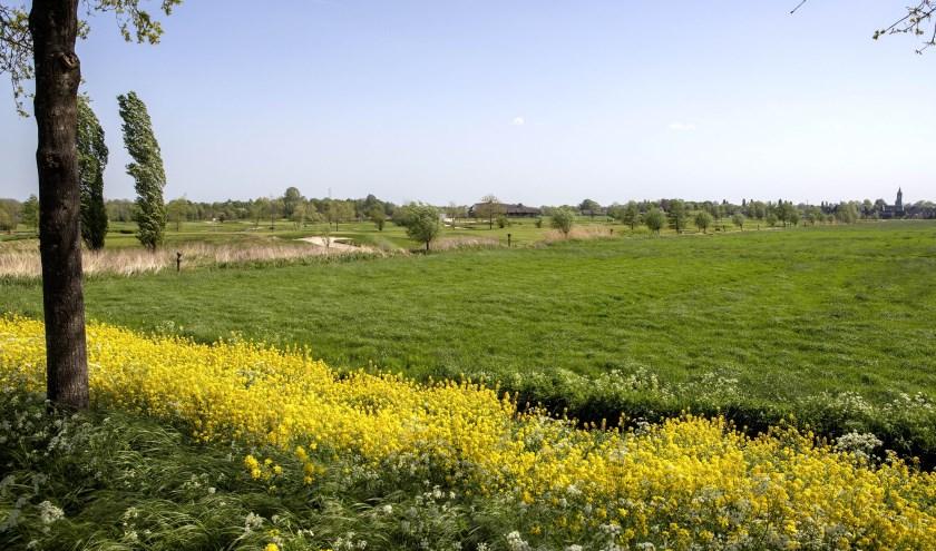Golfbaan Old Course Loenen gaat uitbreiden. Foto: Ruud Taal