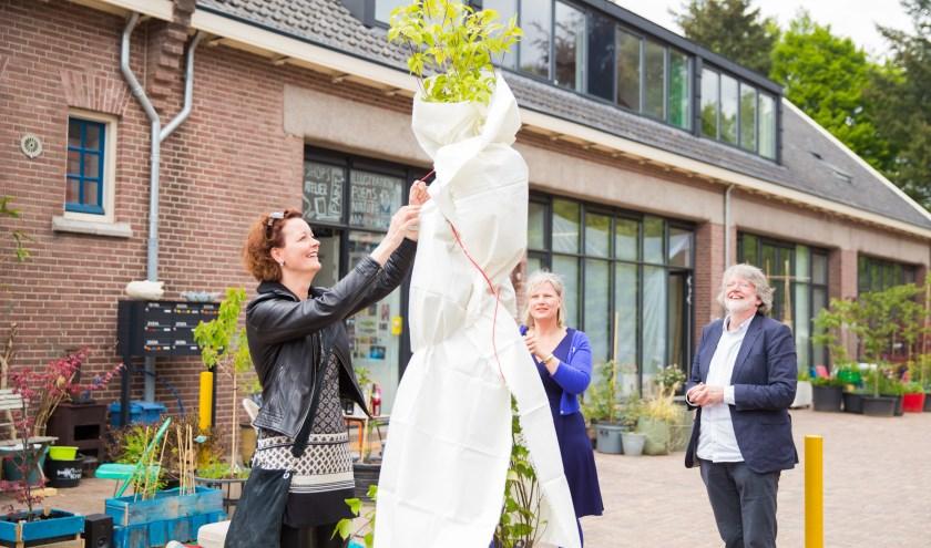 Wethouder Hester Veltman verricht de officiële opening van de atelierwoningen aan het Arthur Koolkwartier (Foto: Jacqueline Imminkhuizen)